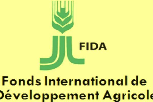 Afrique subsaharienne : le FIDA craint une « génération perdue » de jeunes ruraux