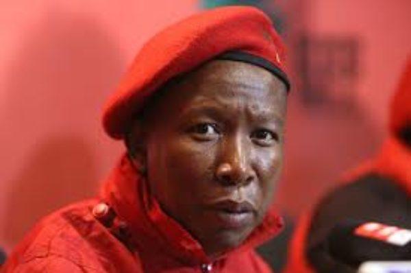 Afrique du Sud : Julius Malema reconduit à la tête des Combattants pour la liberté économique