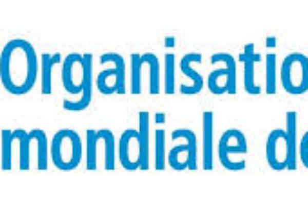 Accusations d'abus sexuels en RD Congo : trois agences de l'ONU ouvrent une enquête