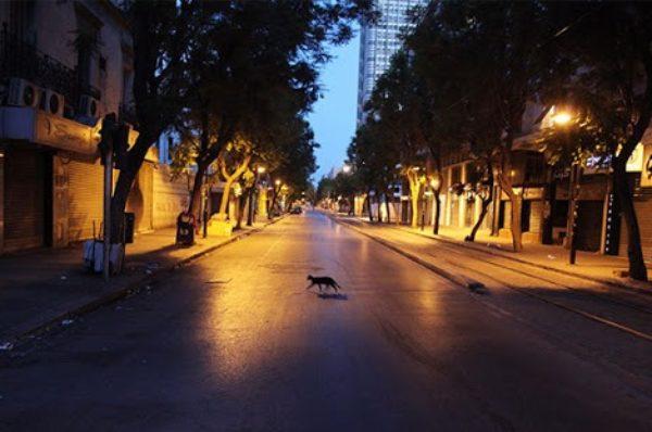 Coronavirus : la Tunisie ne peut pas s'offrir le luxe du confinement