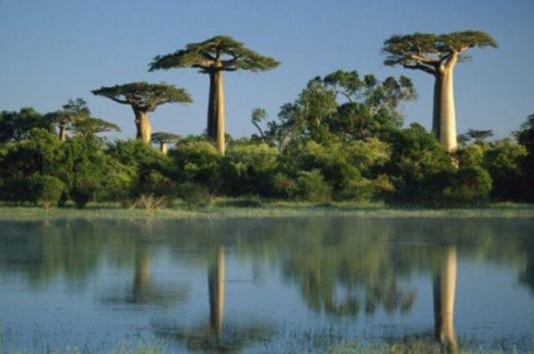 Madagascar: le «tourisme national» pour pallier le manque de visiteurs étrangers?