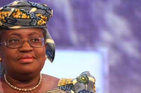 OMC : Ngozi Okonjo-Iweala déjà à l'épreuve