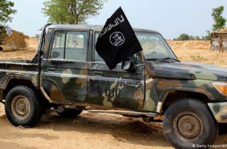 En 2019,des jihadistes de l'Iswap avaeient enlevé un groupe de six travailleurs humanitaires dont une employée d'ACF. En 2019,des djihadistes de l'ISWAP avaeient enlevé un groupe de six travailleurs humanitaires dont une employée d'ACF, ils les ont exécutés.