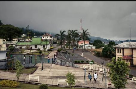 La scène de la vidéo aurait eu lieu près de la ville de Buea, dans la région anglophone du Cameroun (Illustration). ALEXIS HUGUET / AFP