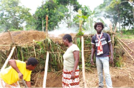 L'exploitation forestière artisanale, la production de bois de chauffage, de bois énergie (charbon de bois) sont des activités pratiquées par la plupart des habitants de cette contrée