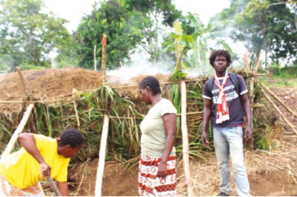 Congo Brazzaville : Dans l'univers de la déforestation du Pool