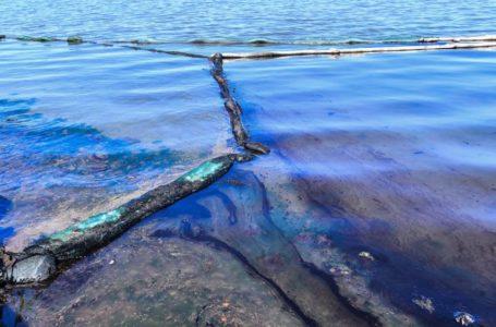 Maurice fait face à sa plus grave catastrophe écologique de son histoire. Un déversement d'hydrocarbures, qui a commencé le 6 août, affecte le sud-est de l'île. AFP