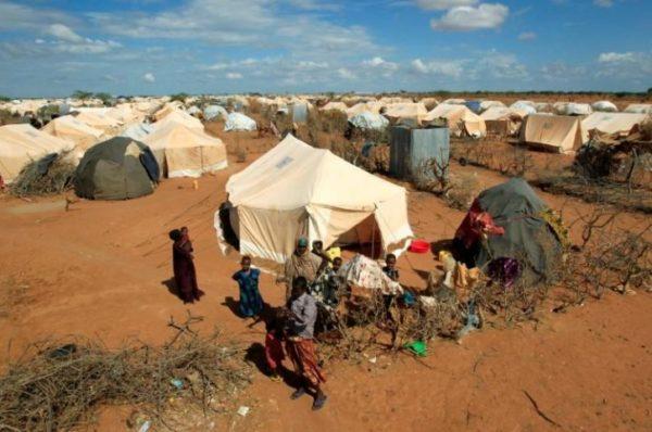 Le Kenya ordonne la fermeture de deux camps de réfugiés et donne un ultimatum à l'agence de l'ONU