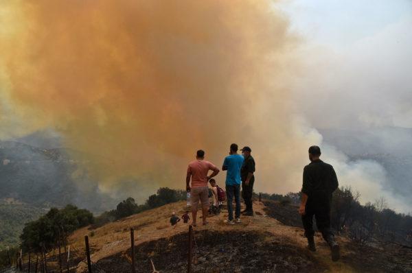 Algérie : des incendies continuent de ravager le nord du pays, le bilan s'alourdit