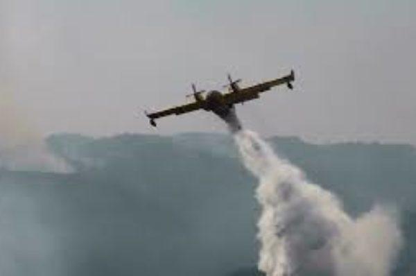 L'Algérie en deuil fait face à ces derniers feux de forêts