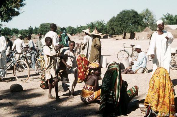 MSF alerte sur les déplacés de l'Extrême nord du Cameroun